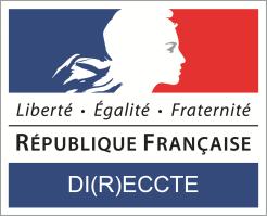 Logo_DI(R)ECCTE