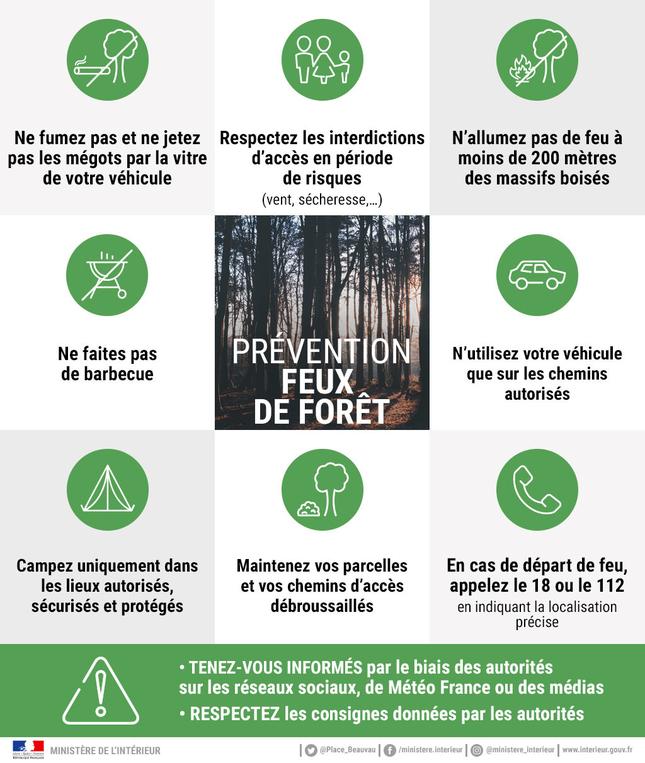 Prevention-feux-de-foret-mosaique-verte_largeur_645